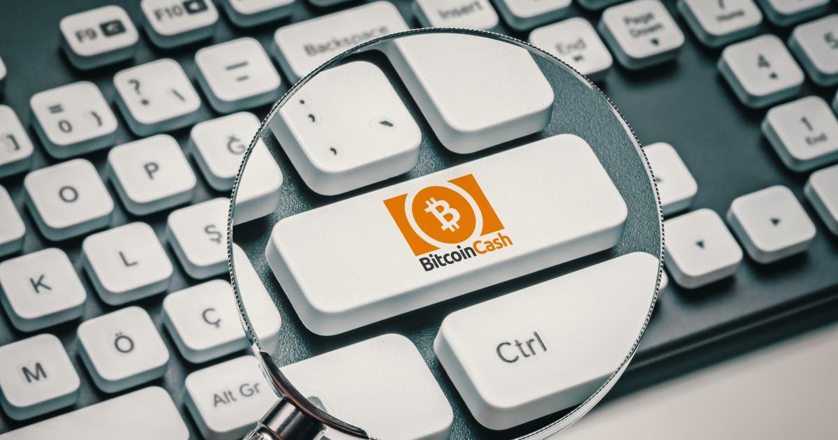 Mise à niveau Bitcoin Cash bug