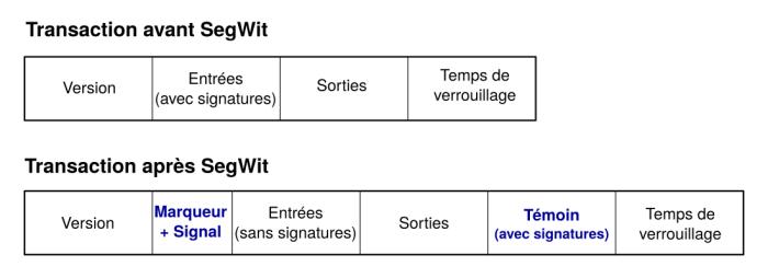 Transactions avant et après SegWit