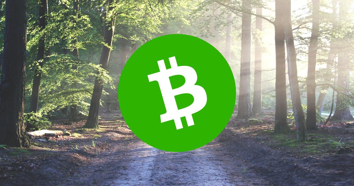 Chemin de forêt Bitcoin Cash BCH